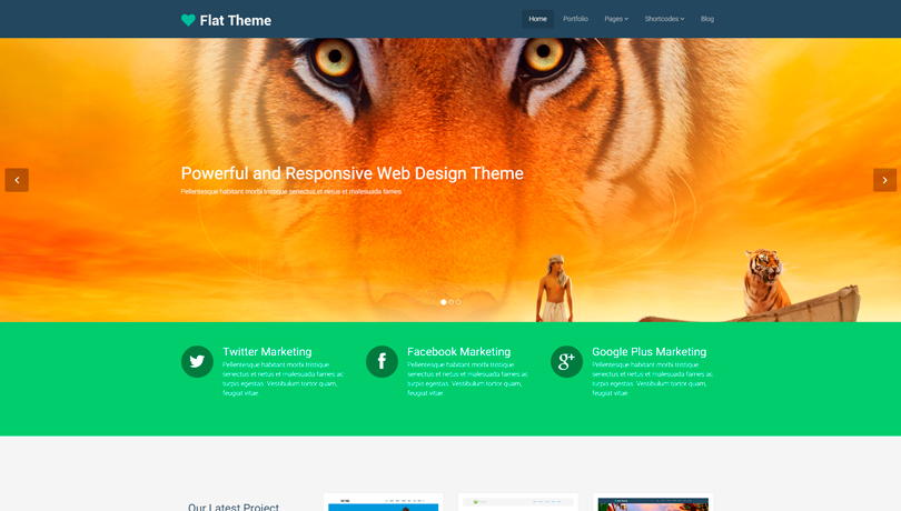 Flat-theme-wordpress